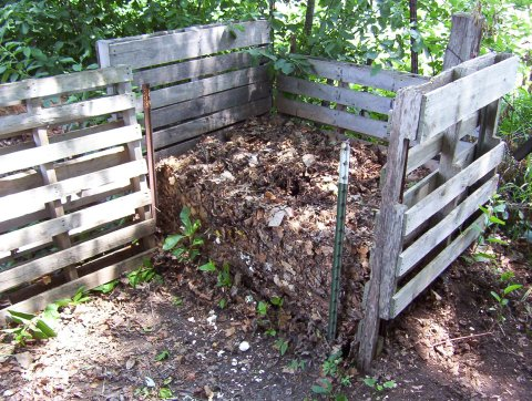 Mulch, rot, and reinvigorate: composting (part 1)
