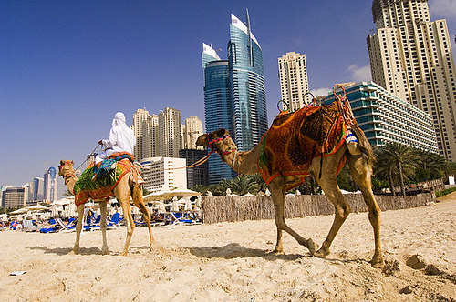 Dubai polluted beaches tourism