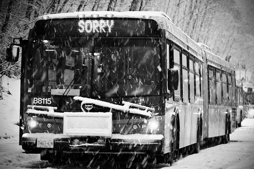 snow bus sorry canada photo