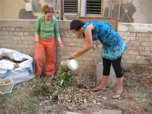 City Tree compost tel aviv