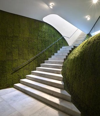 Green Architects