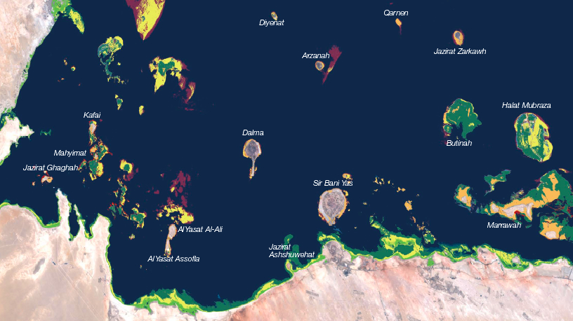 Monitoring Stations Installed in Qatar and UAE To Track Stressed Out Coral