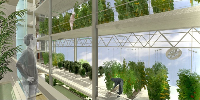 knafo-klimor-china-israel-greenhouse