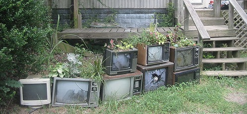 tv-flowerpots-recycled-israel photo
