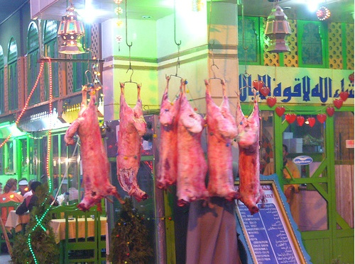 Swine flu cull harms people and the environment in Egypt