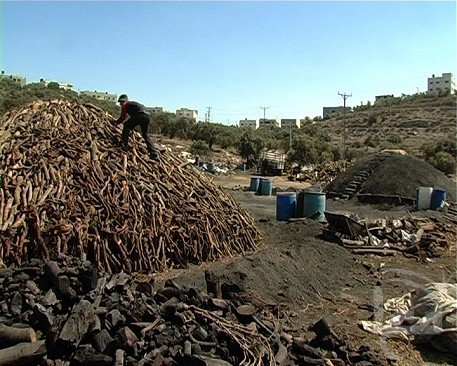 West Bank Village of Yaabad Deals with Industrial Pollution