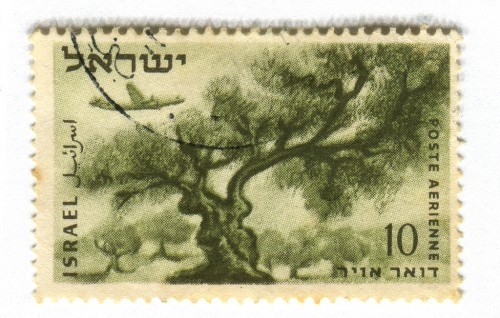 olive-tree-stamp-israel