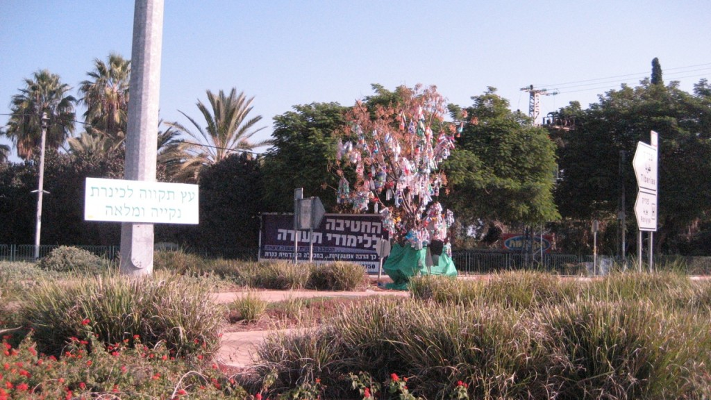 bottle tree israel