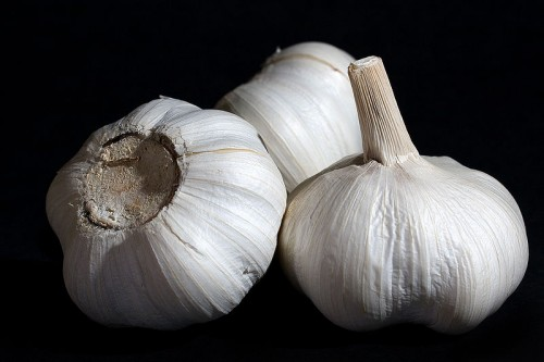 white-chinese-garlic-bulbs