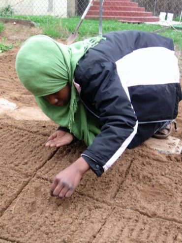 A Halal's Day Work at the People Produce Project