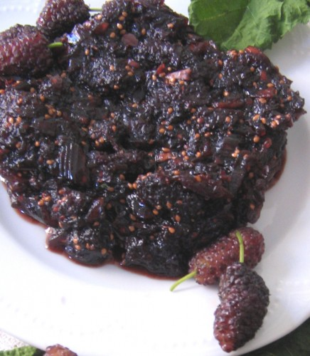 mulberry chutney and fresh mulberries