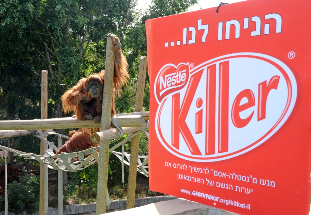 Greenpeace Mediterranean Demands that Nestle-Osem Give the Orangutans and Rainforests a Break