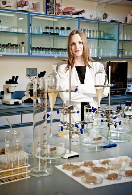 UAE Prof. Ginger Dosier Grows Sand Bricks, Naturally