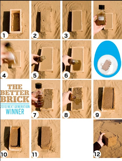 grow your own brick photo
