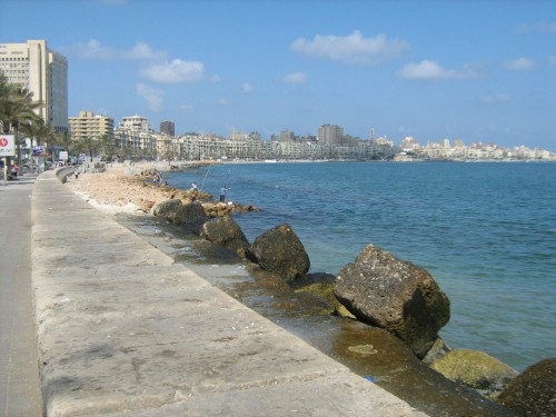 Are Sunnier (Greener) Days Ahead for Alexandria?