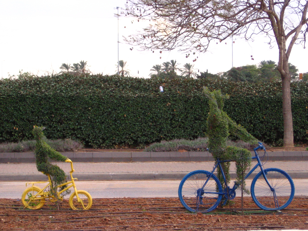 biking cycling sculpture israel photo