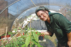 An Eco-Farm Blooms Under Rocket Fire From Gaza