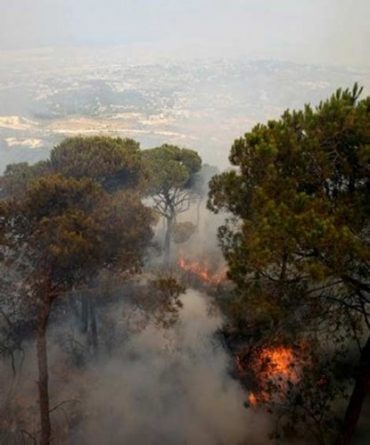 UNESCO Conference in Lebanon Stresses Media's Role in Environmental Change
