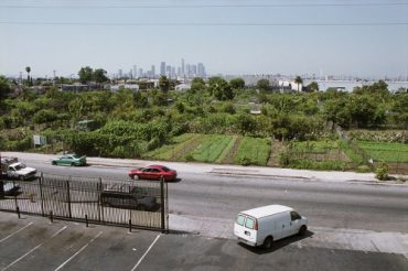Documenting the Demise of America's Largest Community Garden