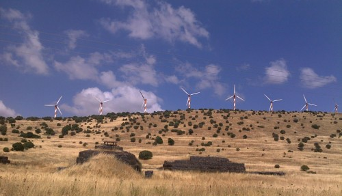 Wind turbine power company nixed for biosphere risks in Israel