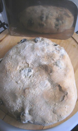 Sourdough Part II: Care and Feeding Of The Starter