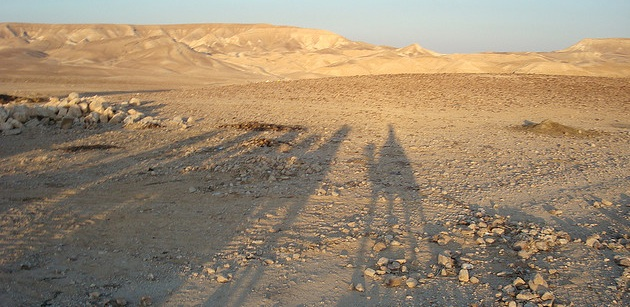 israel bedouin land camels sun shadows