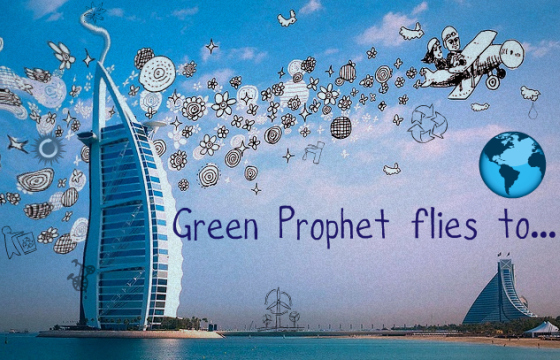 green prophet blog review