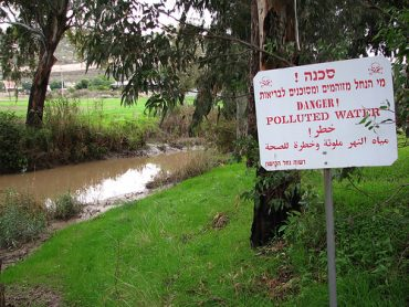The Kishon River: Polluted No More?