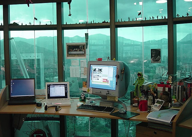 green office space computer birds windows