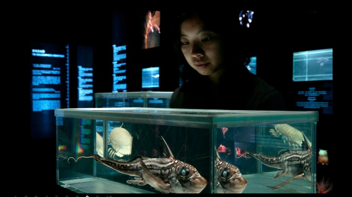 """The Deep"" Exhibition Focuses on the Planet's Rarest Life Forms"