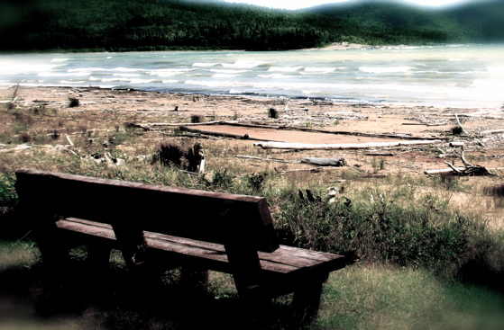 peaceful-waterside-bench