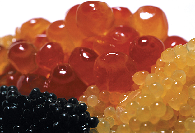 5 Countries To Save the Caspian Sea's Caviar