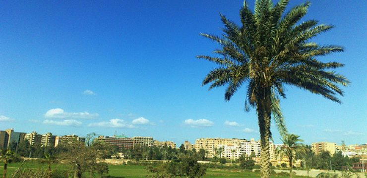 green-lifestyle-cairo-egypt.jpg