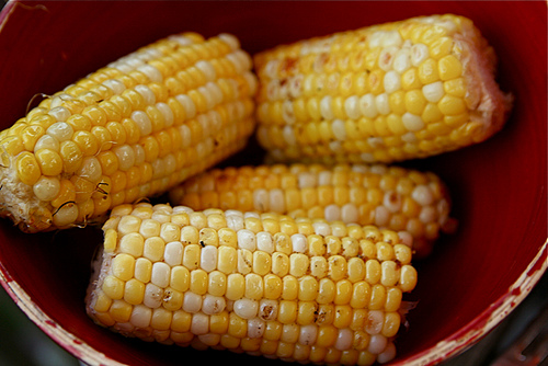 corn-cobs-in-bowl