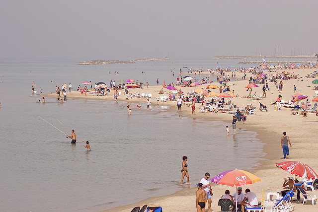 Israeli Environmental Protection Ministry to Rank Israel's Beaches on Green-ness