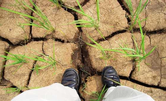 water-shortages-uae-ice-land-park-green-problems