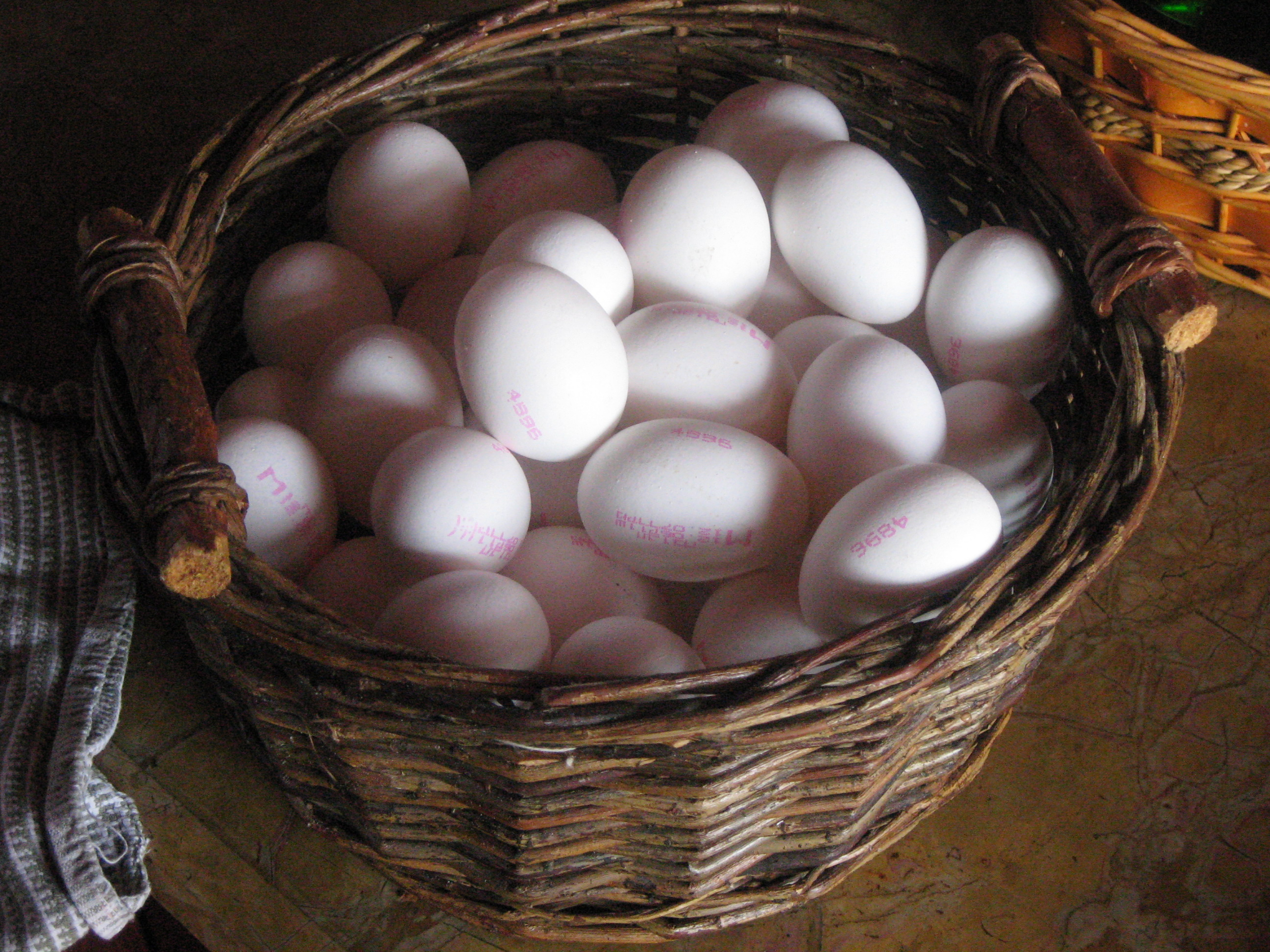 Local Eggs, Industrial Eggs, and Salmonella