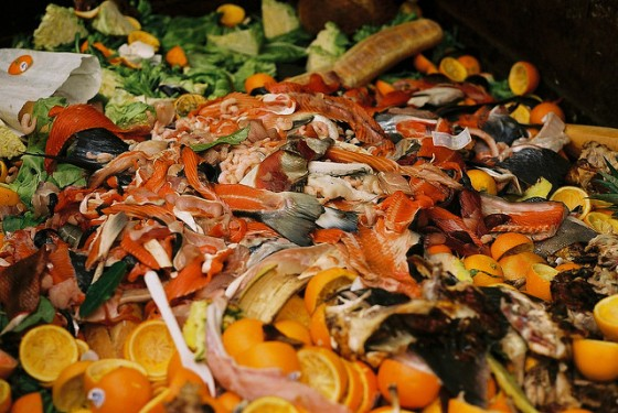 American Wasteland's Jonathan Bloom Shows Creative Ways to Reduce Food Waste