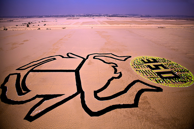 Cairo's Climate Art of Epic Proportions