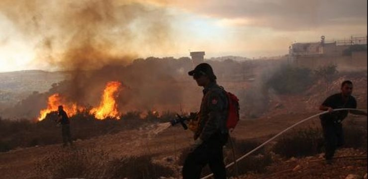 israel-fire-photo-flame-carmel.jpg
