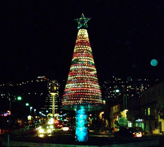"""recycled christmas tree haifa"""