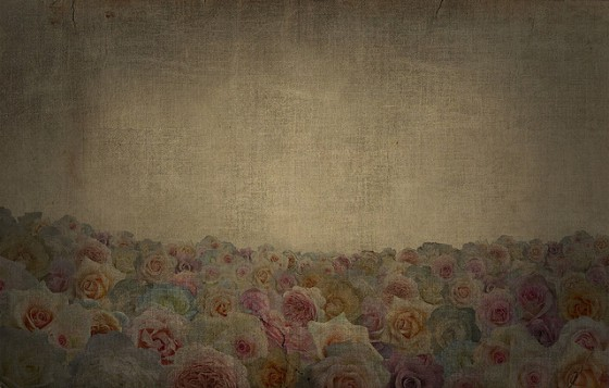 textured-roses-image