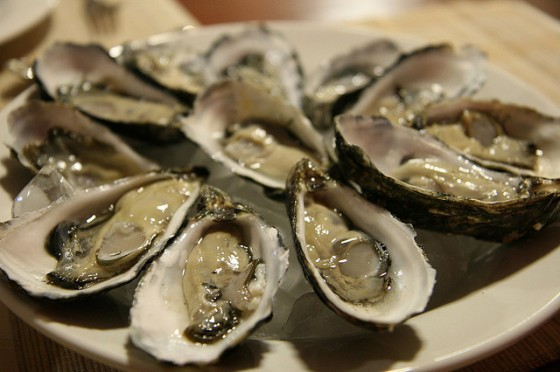 farmed-oysters-sustainable