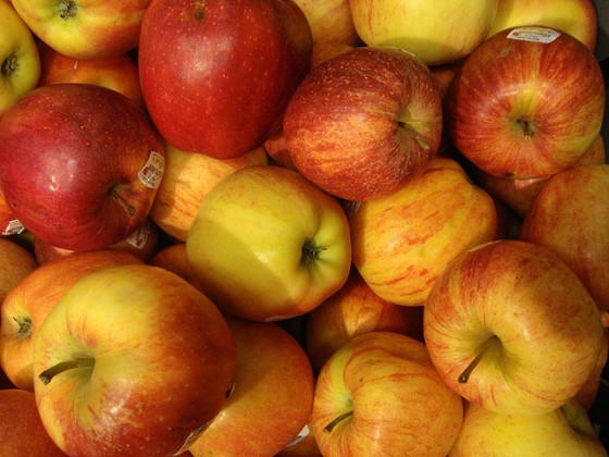 bushel of apples photo