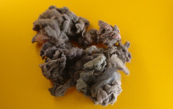 out of your dryer lint...