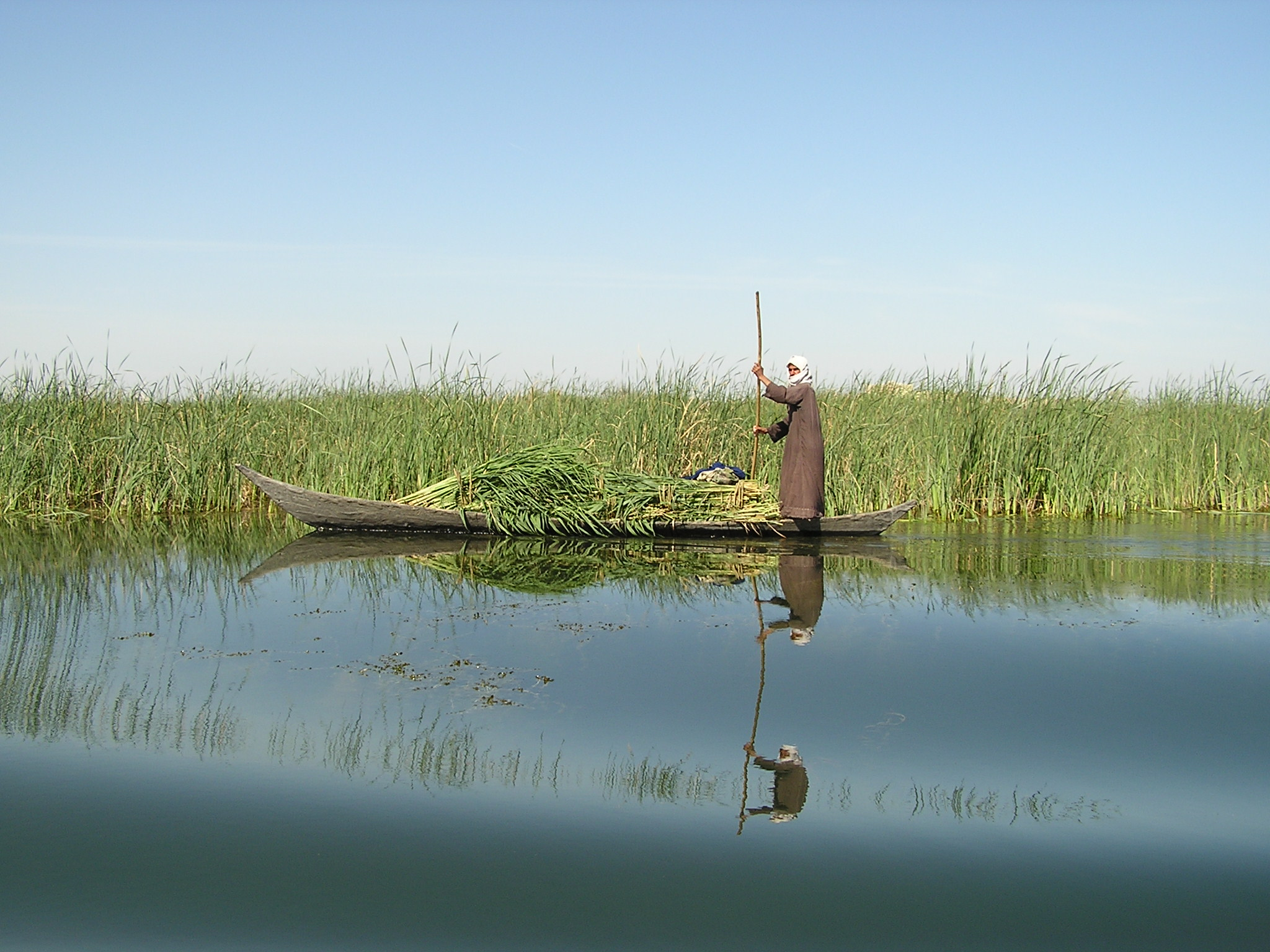 Restoring Iraq's 'Garden of Eden'- The Mesopotamian Marshlands