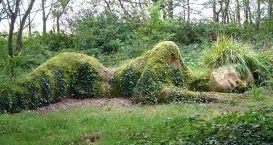 grass naked woman