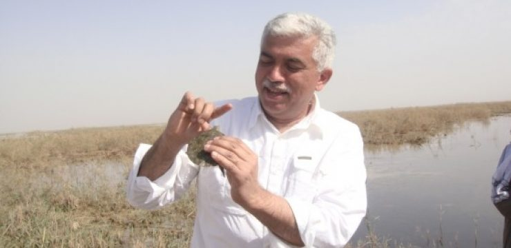 Dr.Azzam-with-BBC-team-in-central-Marshes-2-2.jpg