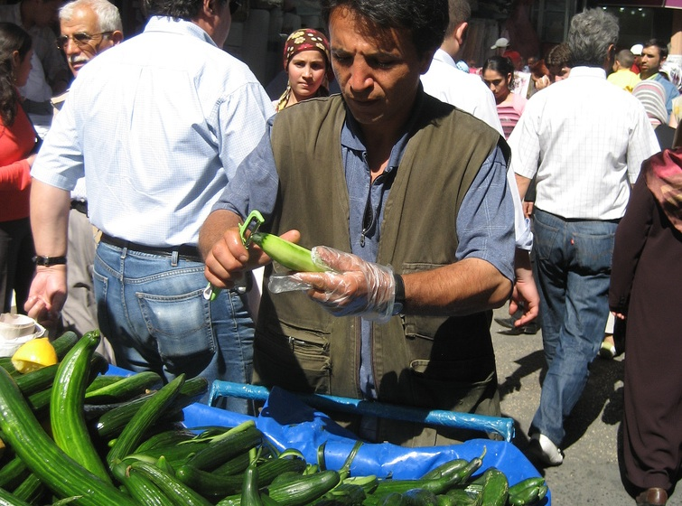 Killer Cucumbers Have Israelis Freaking Out