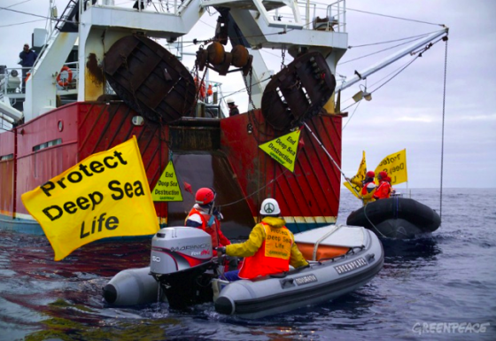 Greenpeace, bottom trawling